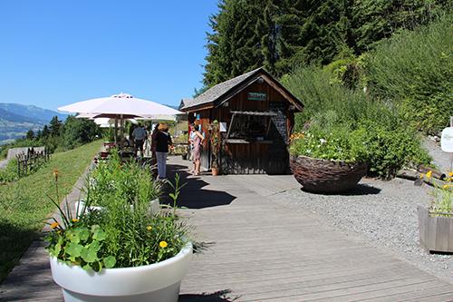 jardincimes1.jpg