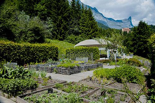 loisirs_jardin_cimes1.jpg